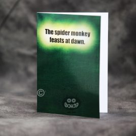 TR1-The spider monkey…